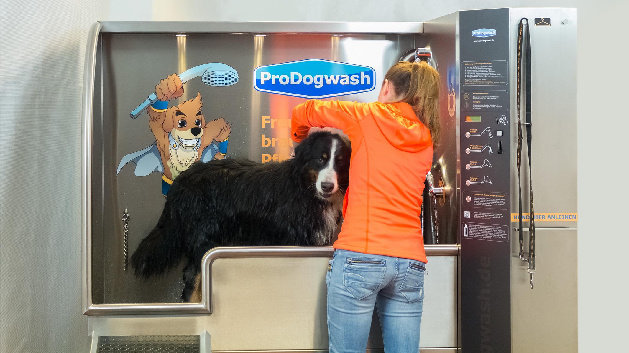 K1600_23-prodogwash-hundewaschanlage